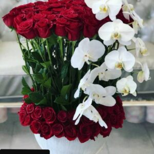 Red Roses and Phalaenopsis